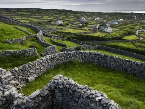 pastoral-landscape_6792_600x450
